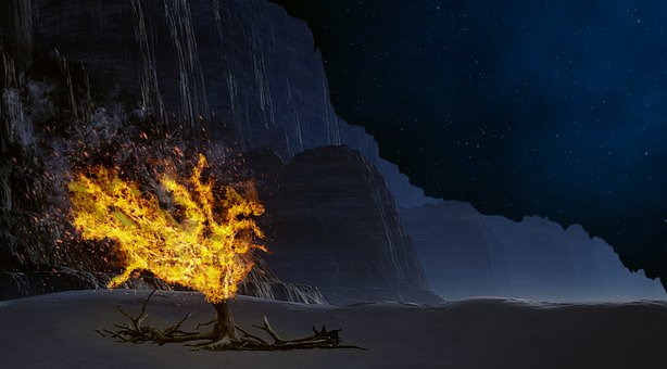 What the Burning Bush is Speaking to Someone Right now!