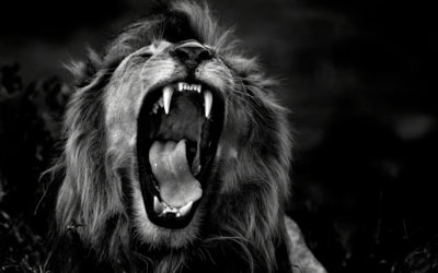 The Undetected Sin that Attracts the Roaring Lion